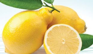 Picture for category Sicilian Lemon