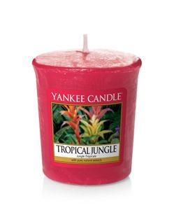 Picture of Tropical Jungle Votives