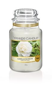 Picture of Camellia Blossom large Jar (gross/grande)