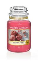 Picture of Roseberry Sorbet large Jar (gross/grande)