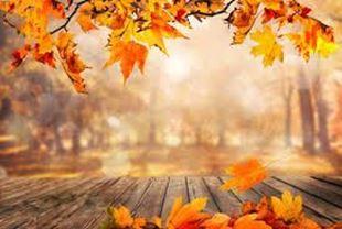 Bild für Kategorie Herbstdüfte