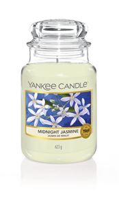 Bild von Midnight Jasmine large Jar (gross/grande)